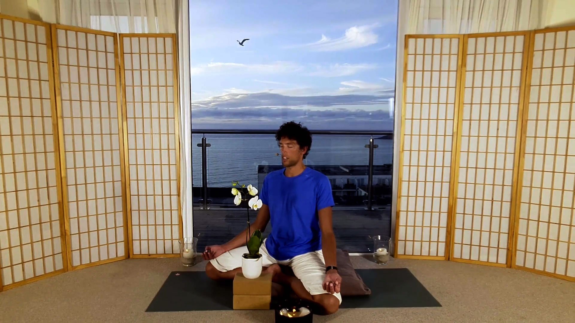 move and meditate online on demand class focus into calm
