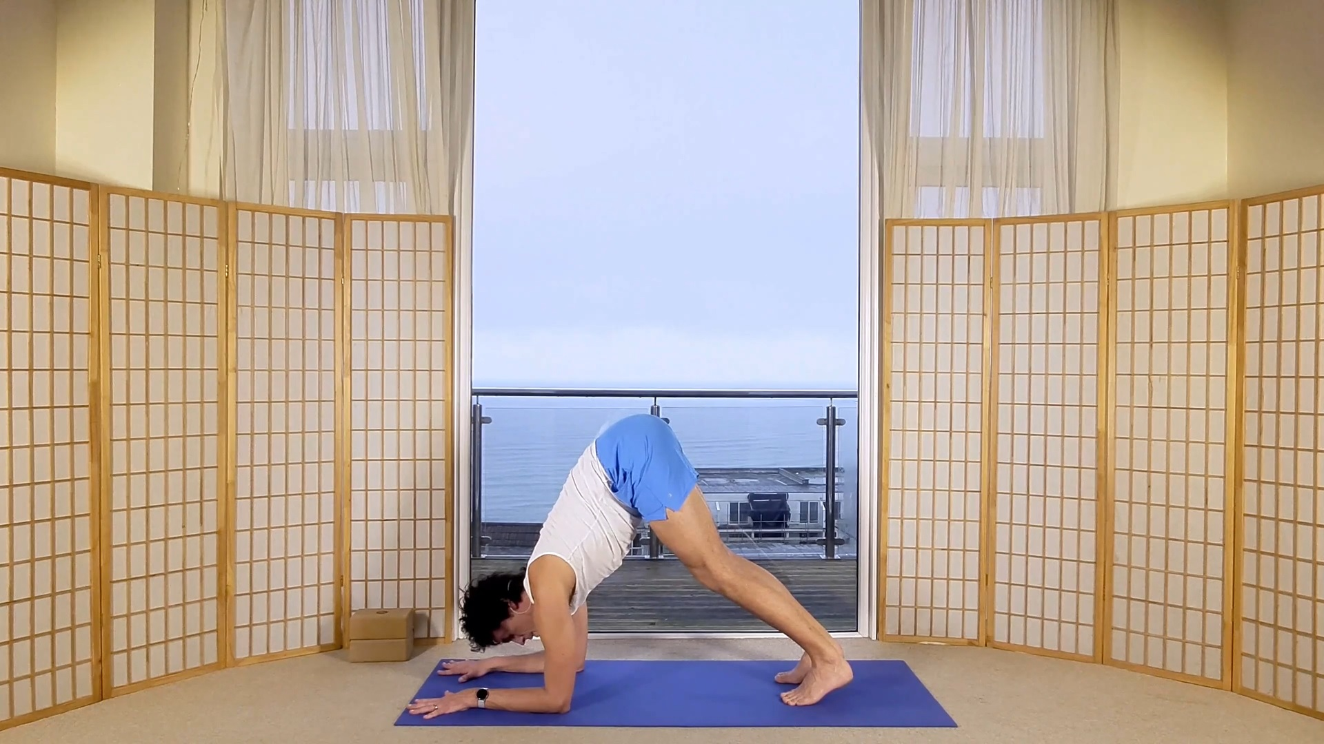 Dolphin Shoulders Core Oceanflow Anywhere On Demand online yoga