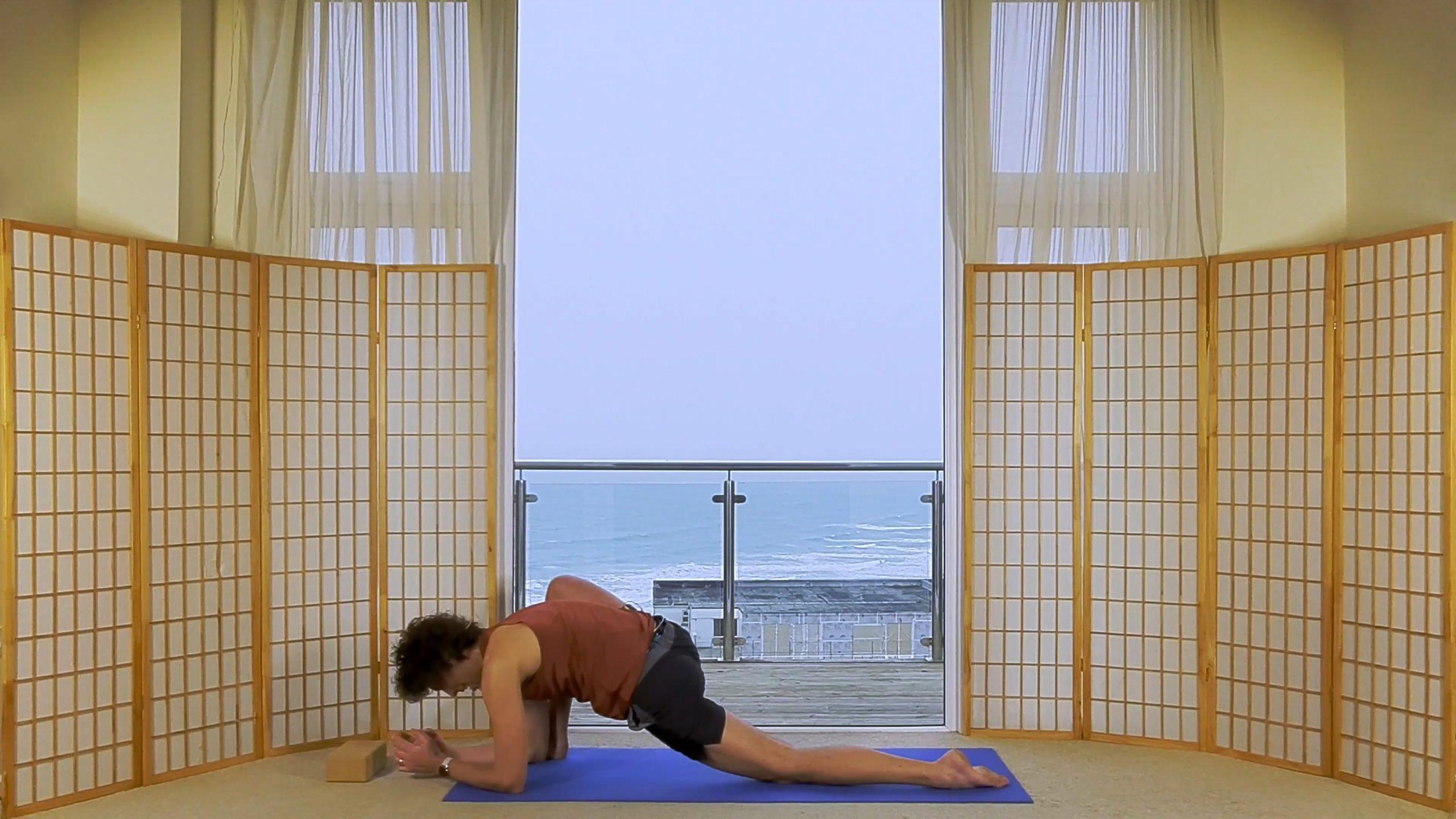 Foundation Beginner Yoga Hip Alignment Oceanflow online